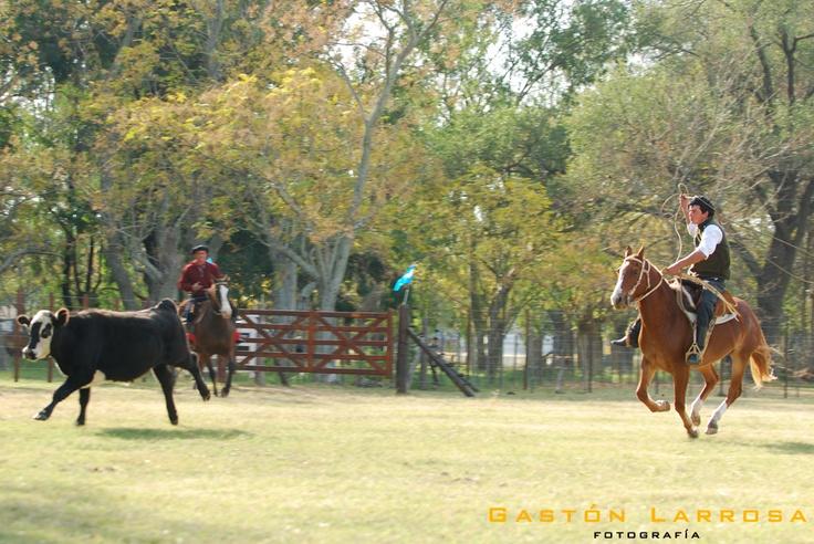Fotos por Gastón Larrosa  http://www.flickr.com/photos/gaslarrosa/