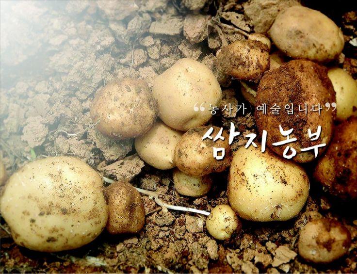 쌈지농부 회사소개 201106 by 쌈지농부 ssamzienongbu via slideshare