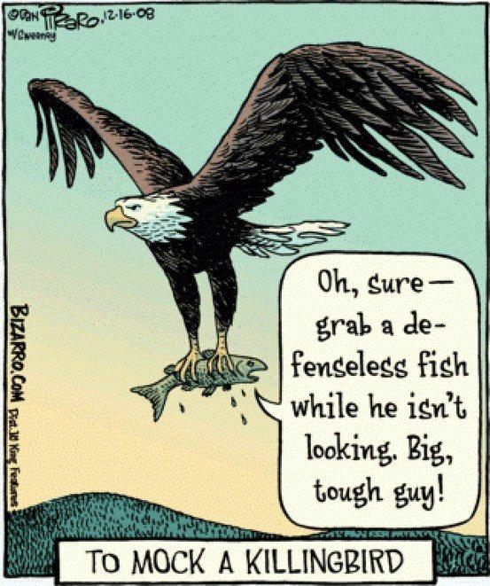 To Mock a KillingBird...