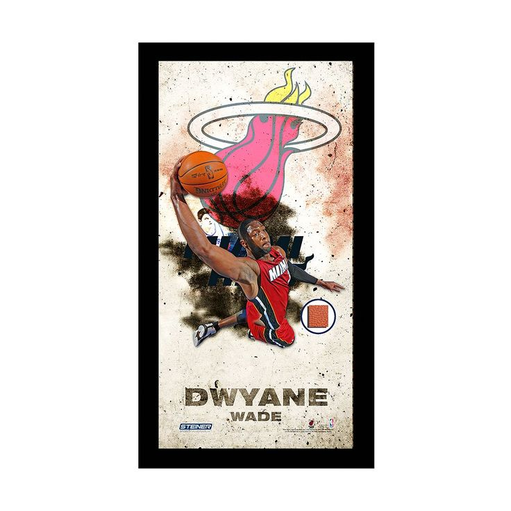 """Steiner Sports Miami Heat Dwyane Wade 10"""" x 20"""" Player Profile Wall Art with Game-Used Basketball, Multicolor"""