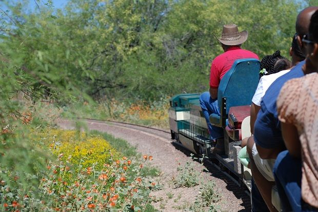 All aboard the Adobe Desert Mountain Railroad  #Phoenix #Arizona