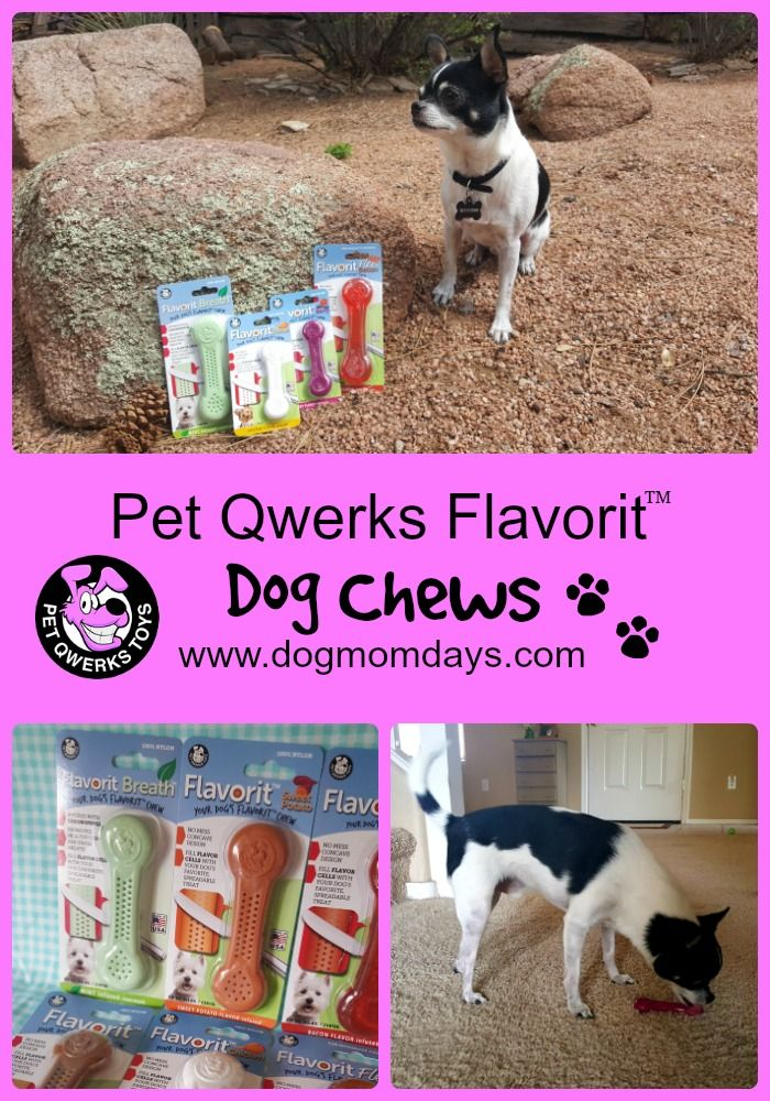 **GIVEAWAY** Pet Qwerks Flavorit Dog Chews $40 prize package!