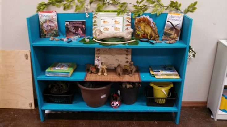 Dinosaur museum, fossil dinosaurs, books, plants, real bones, pictures preschool