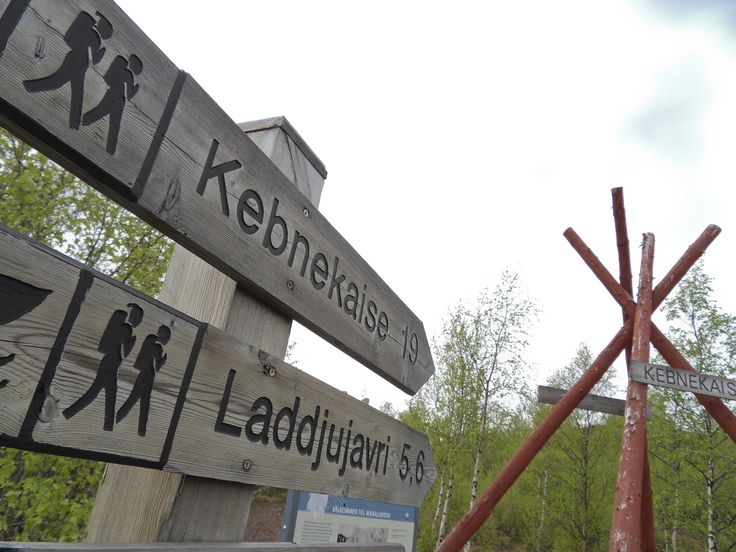 The starting point of sevreal hiking trails in Nikkaloukta. Photo by Fredrik Broman