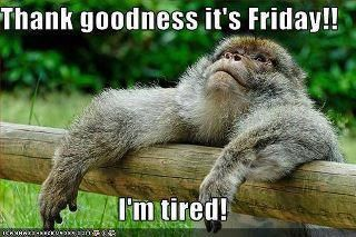 oh yesss Friday ;) #humor #friday