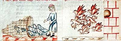 Links: Vogelfang mit reusenartigen Fangkörben, rechts: Taubenschlag.  Lilienfeld, Österreich, Stiftsbibliothek: Codex 151, fol. 221v, um 1350
