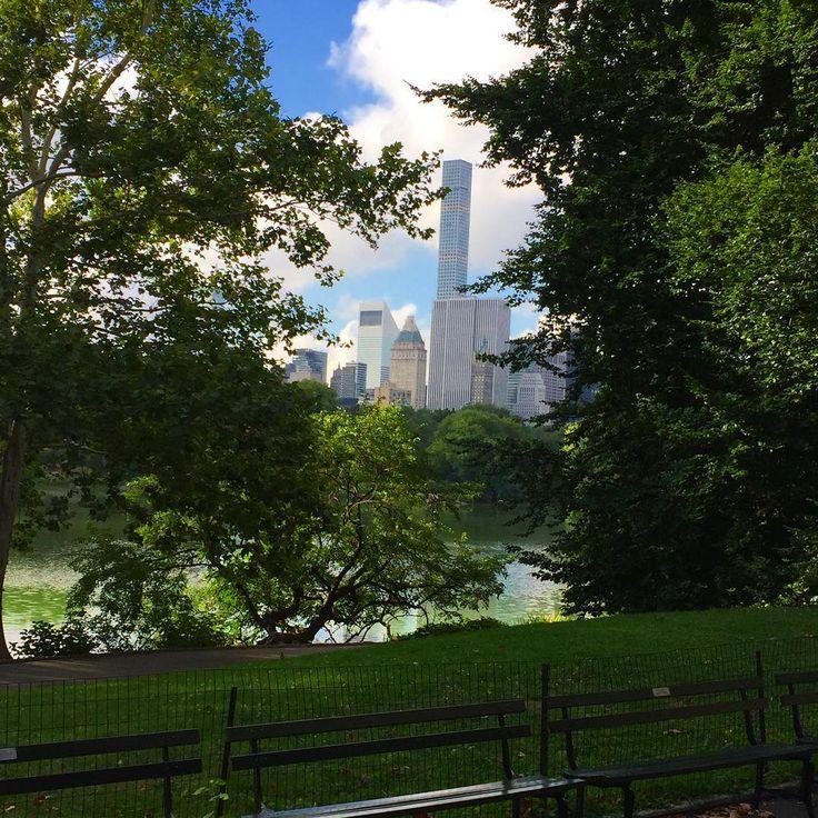 Comenzando el día corriendo por Central Park para bajar los tacos de ayer ... #running #manhattan #centralpark #runners #parks #igers #igersnyc