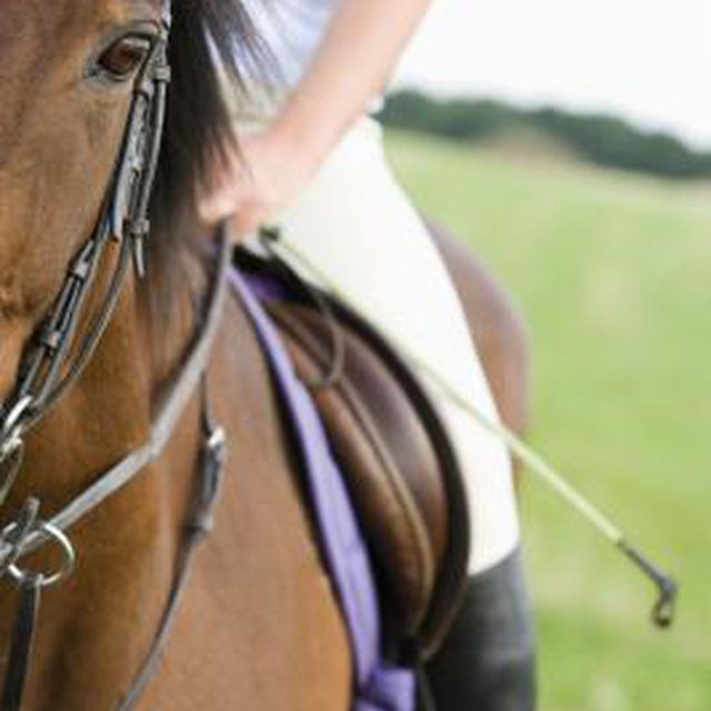 Give your horse's bridle some personality.