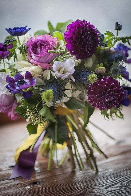 #Bouquet of dahlias, garden roses, blue anemones, purple anemones, thistle, protea, geranium leaves • Holly Carlisle