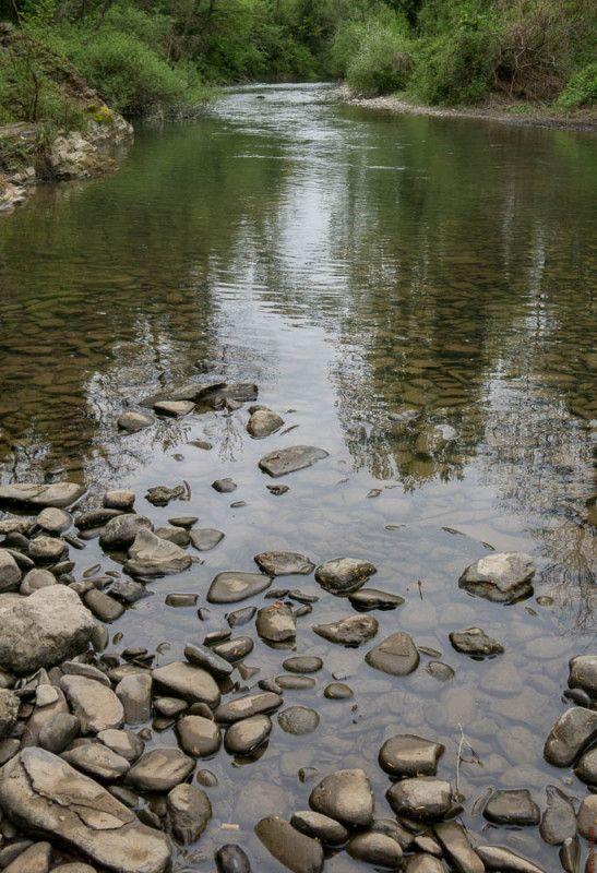 Avevo una partita ancora aperta, nella Tail Water della Sieve...   Come scritto nell'articolo del 13 Aprile scorso (http://www.iopescopositivo.it/pesca-a-mosca-nella-tail-water-sieve/), quel giorno ero ripartito verso casa con un po' di rammarico perché ...