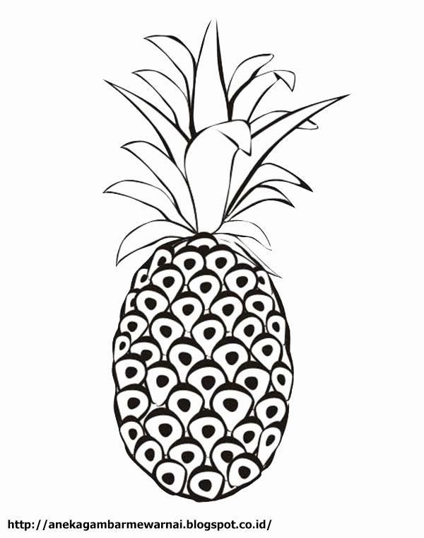 Cute Pineapple Coloring Page Lovely Aneka Gambar Mewarnai Gambar