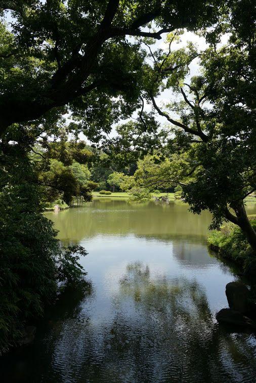 Nature Photography – Yhteisö – Google+