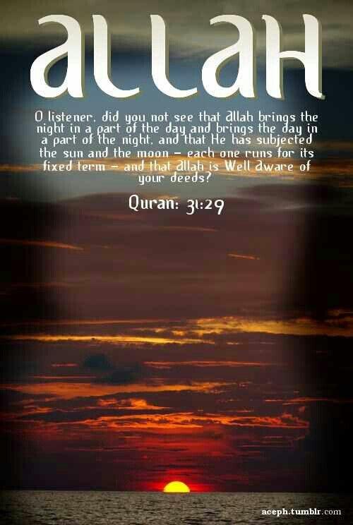 Surah Luqman Verse 29