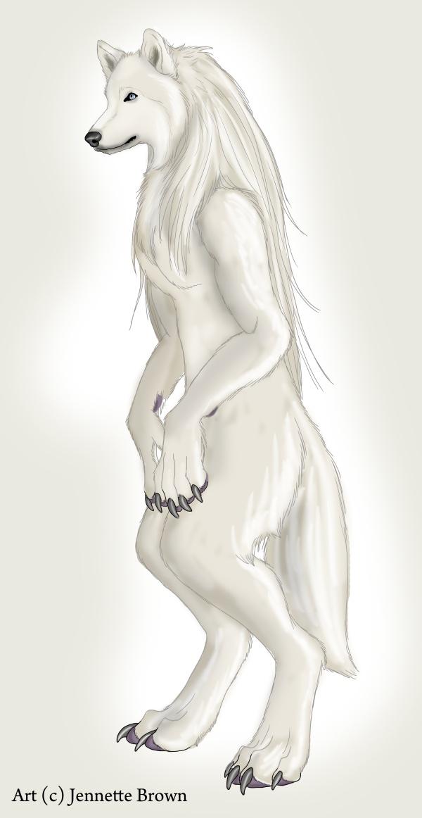 Werewolf Standing -- Female by =sugarpoultry on deviantART