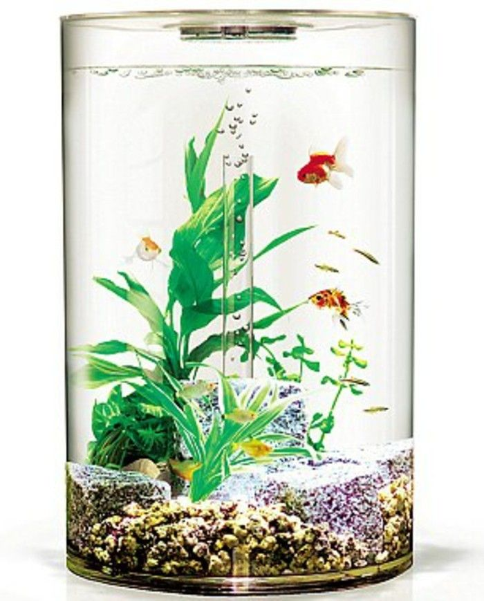 1000+ ideas about aquarium deko on pinterest | aquarienpflanzen, Hause ideen