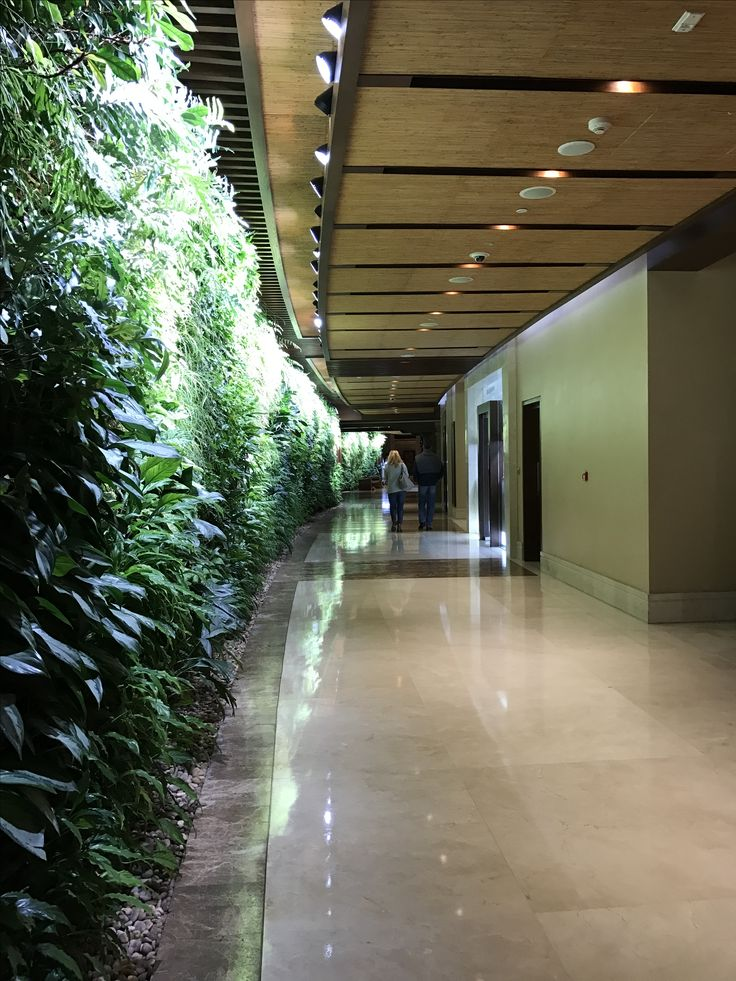Green Wall Lobby <3