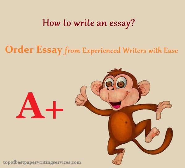 How to write an essay - Order Essay from Experienced Writers with Ease