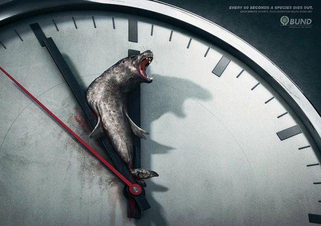 Iklan tentang dunia fauna