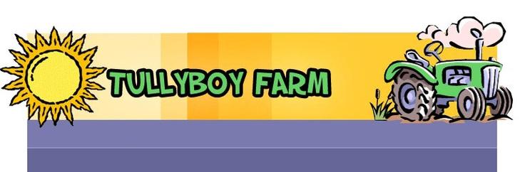Tullyboy logo