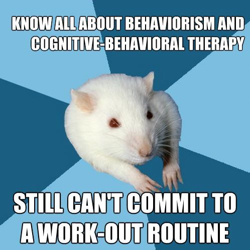 psychology major rat | Tumblr...or in my case, Addiction Counseling