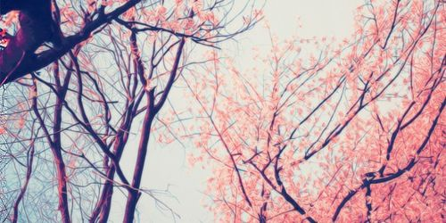 Fashion style Headers girly for twitter tumblr for lady