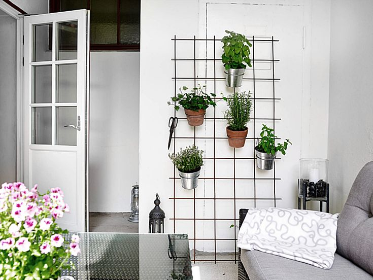 FOR THE PLANTS - Design and form