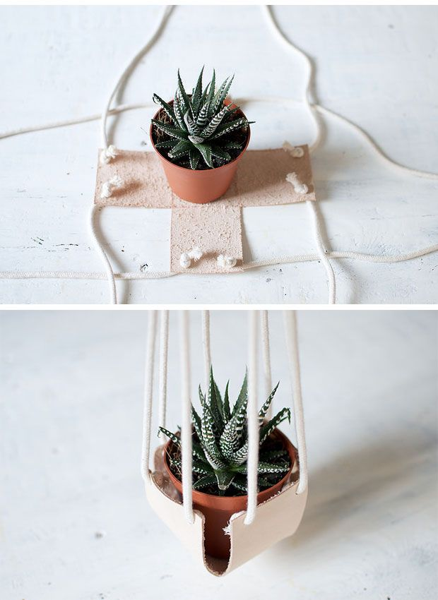 DIY Hanging plants to decorate differently