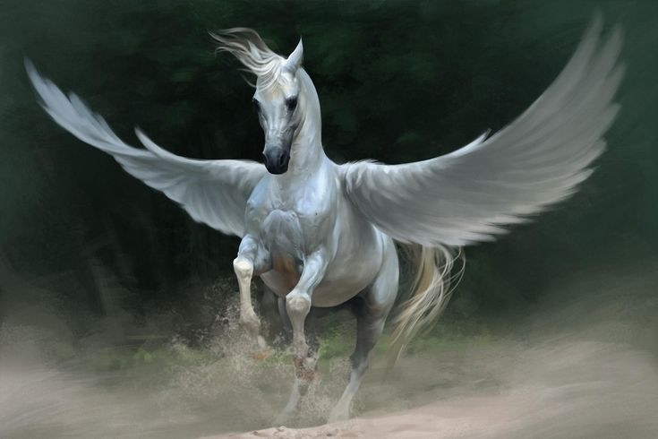 Download Wallpaper Pegasus Horse Wings Hd Background Horse Wallpaper Greek Mythological Creatures Winged Horse