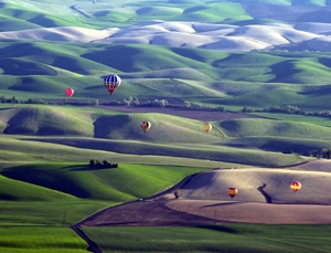 Hot-Air Balloon Stampede . Walla Walla, Washington, USA