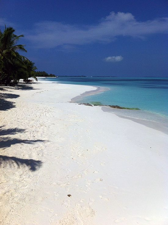 Our beach. Lovely. (at Lux Maldives)