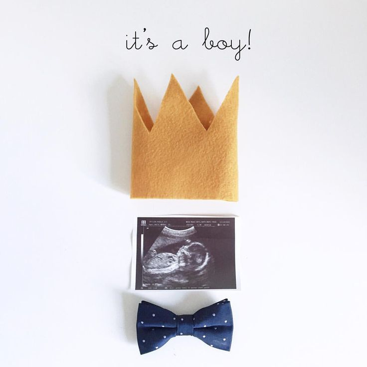 Cute gender announcement