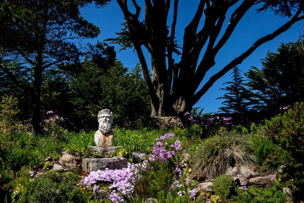 Tresco Abbey Garden on the island of Tresco, Isles of Scilly