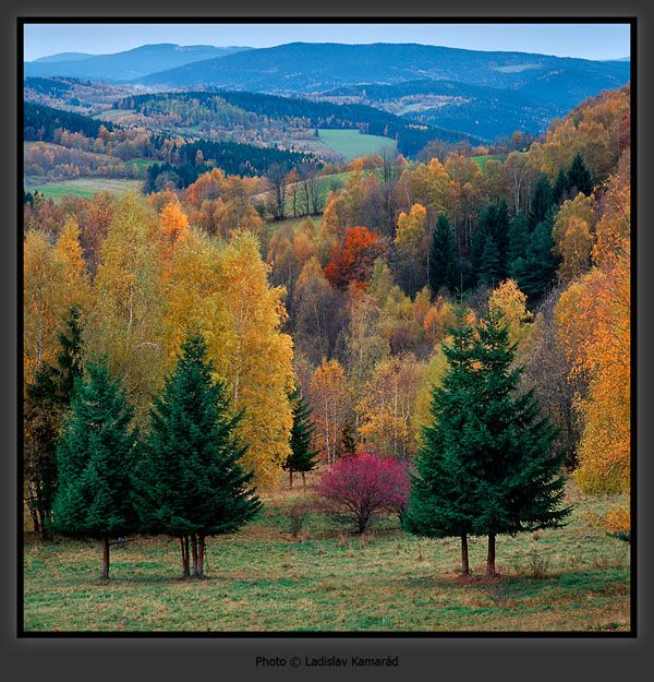 Sumava mountains in #Czech Republic praguetourguide.tumblr.com