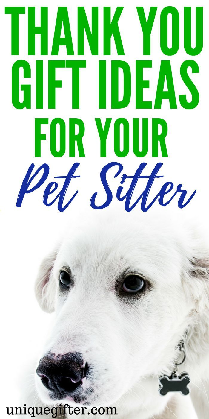 Thank you gift ideas for your pet sitter | What to get a dog sitter as a thank-you | Ways to thank a cat sitter | Creative Christmas presents for a dog walker