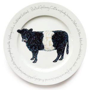 43 Best Hard To Find Belted Galloway Stuff Images On
