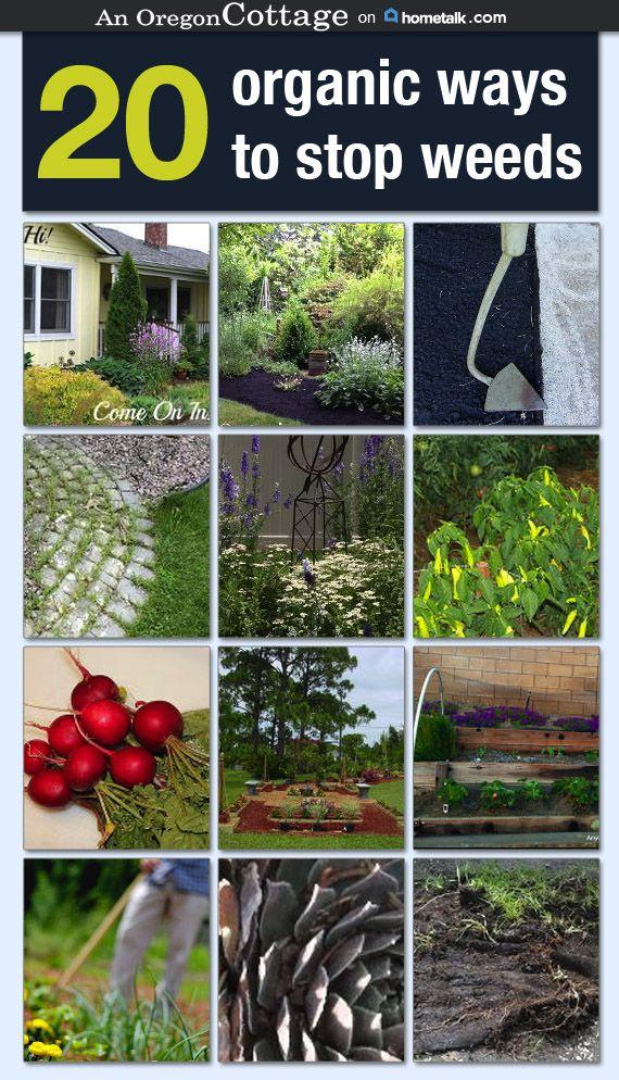 Organic Weed Control Tips. Organic GardeningVegetable ...