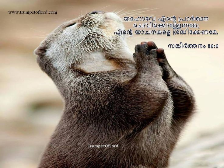 Give ear, O #Lord, to my prayer; and listen to the cry of my supplications :- Psalms 86:6