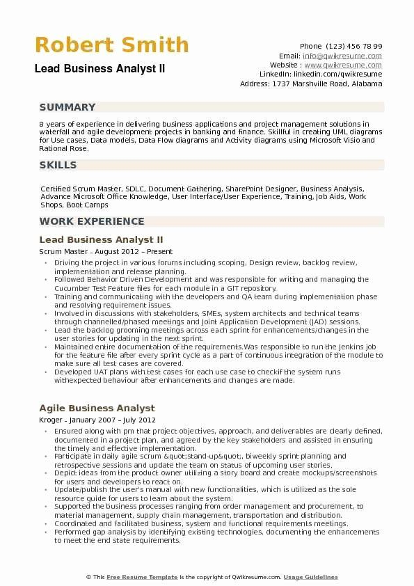 Business Analyst Resume Summary New Lead Business Analyst Resume Samples In 2020 Project Manager Resume Resume Examples Job Resume Examples