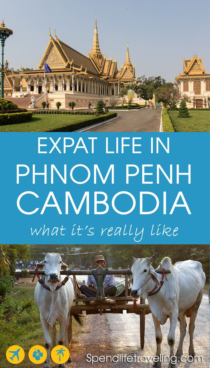 What is Phnom Penh and life in Cambodia really like? Interview with an expat