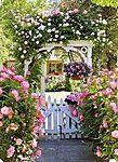 Мобильный LiveInternet Flower garden / Цветочный сад | лёшичка - Дневник лёшичка |