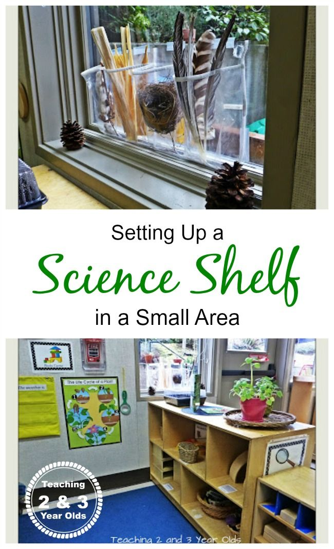 Preschool science center - you don't need a lot of space! - Teaching 2 and 3 Year Olds