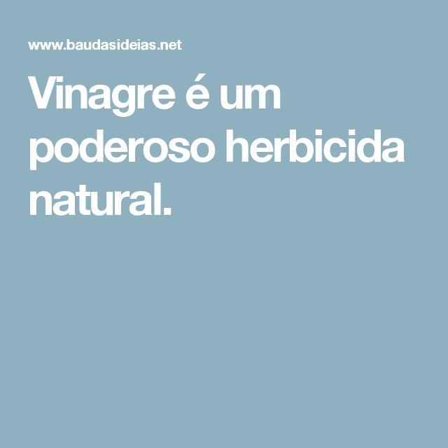Vinagre é um poderoso herbicida natural.