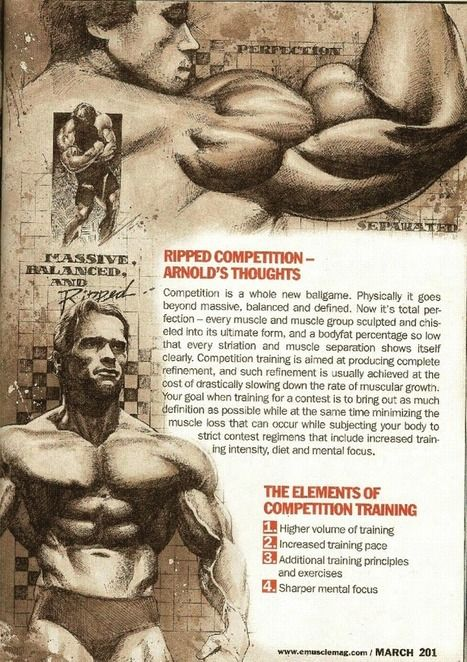 PART 12: Training Secrets Of The Oak | The 5 Chambers Of Fitness | Scoop.it