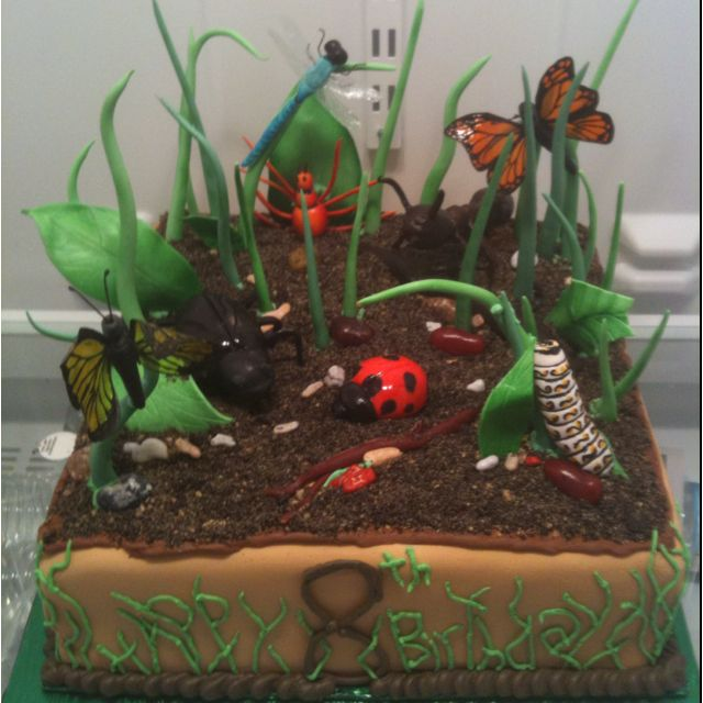 Bug birthday cake, all sugar. www.artisticcakedezine.com