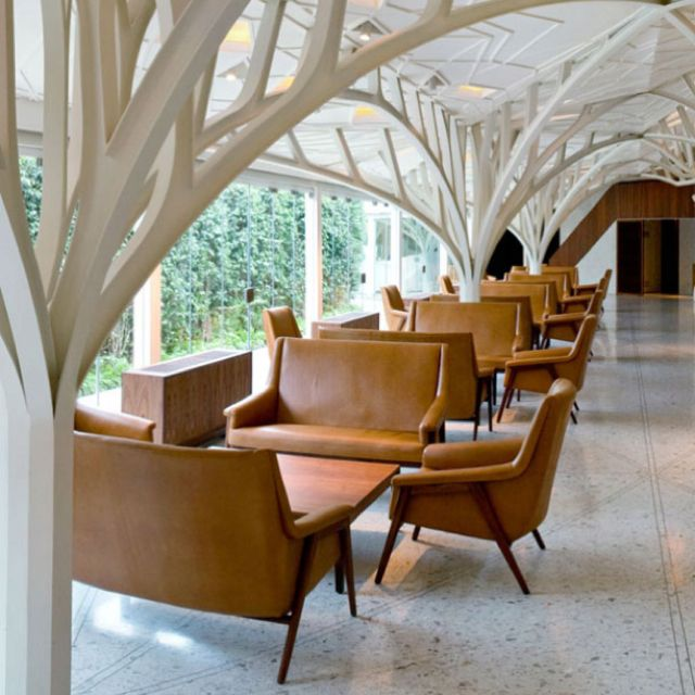 Ceiling, low, branches, retro, natural light, mid century, modern, leather, tan: Architects, Restaurant Design, Interiors, Ceilings Design, Columns, Trees, Architecture, Bar Design Awards, All