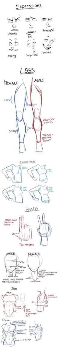 How to draw: simple bodies