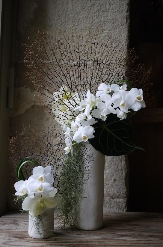 """""""The breath of flowers is far sweeter in the air than in the hand"""" - SIR FRANCIS BACON -"""