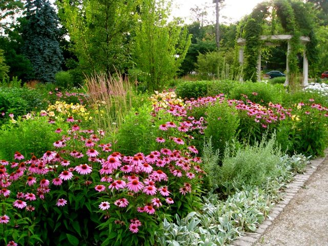 perennial flower garden designs