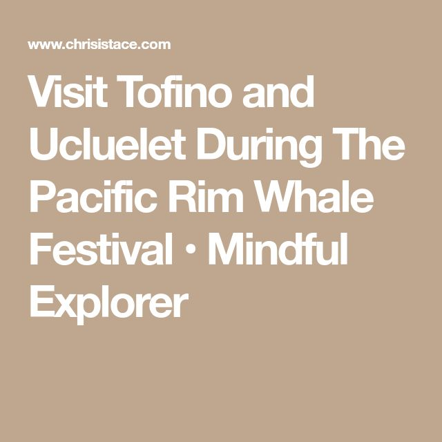 Visit Tofino and Ucluelet During The Pacific Rim Whale Festival • Mindful Explorer