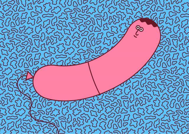 Sausage Guy, Personal Work | Martina Paukova | makersmgmt.com